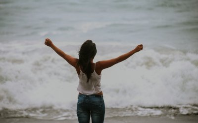 Emotional Freedom: Breaking the Cycle of Reactivity